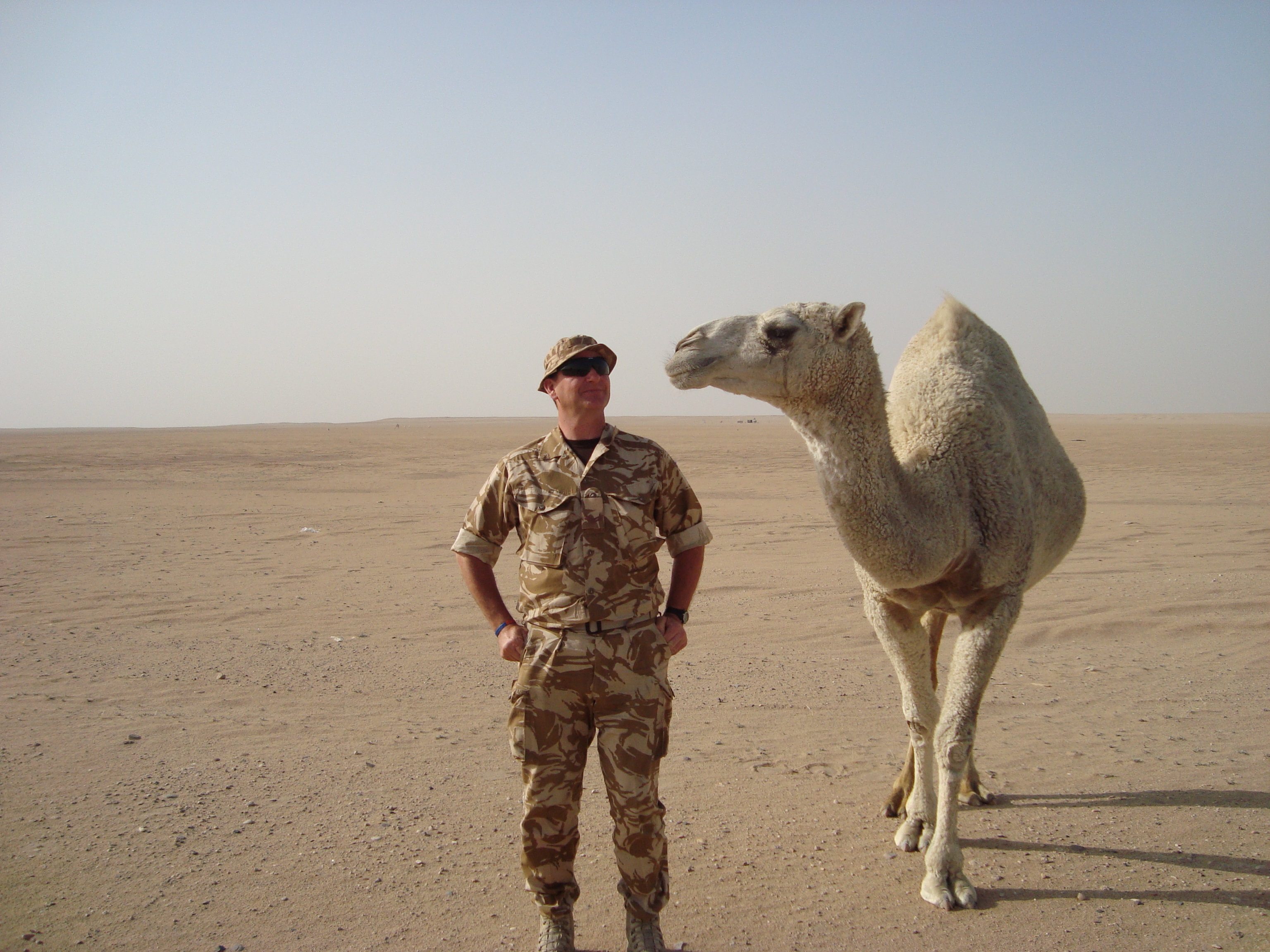 Soldier and camel in Kuwait